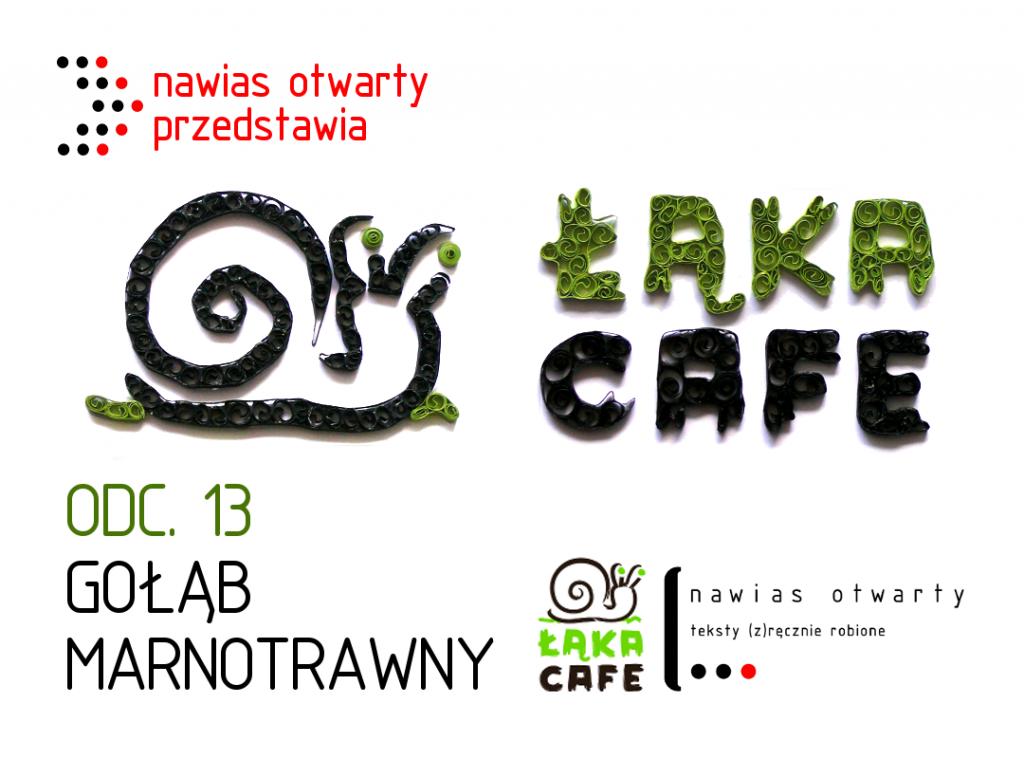 lakowyserial_13